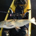 panama kayak fishing