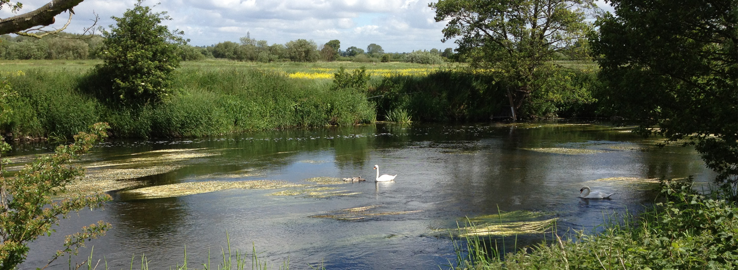 Top 5 fishing spots in the uk fishing sites for Best fishing spots