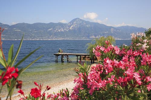 beauty of lake garda