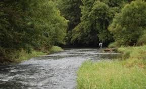 The River Tamar