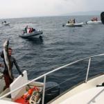 krk island fishing