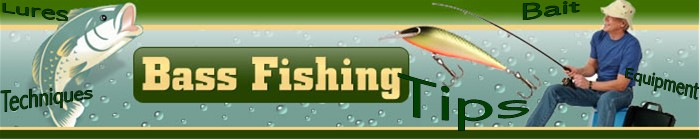 Angler Approved Tips For Winter Bass Fishing Fishing Sites